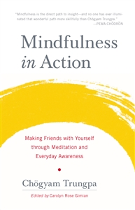 Mindfulness in Action- Hardcover