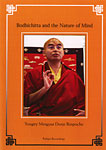 Bodhichitta and the Nature of Mind DVD