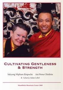 Cultivating Gentleness & Strength DVD