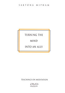 Turning the Mind Into An Ally DVD