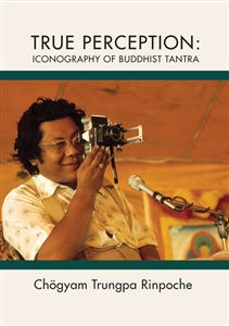 True Perception: Iconography of Buddhist Tantra DVD
